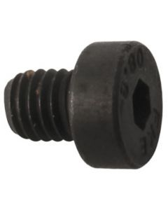 Buccaneer Cylinder Screw Part No. 169043