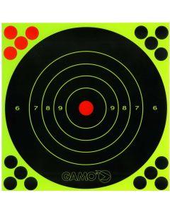 Gamo Green Sticker Target