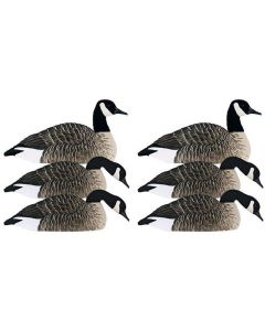 Sportplast Canada Goose Decoys (Set of 6)